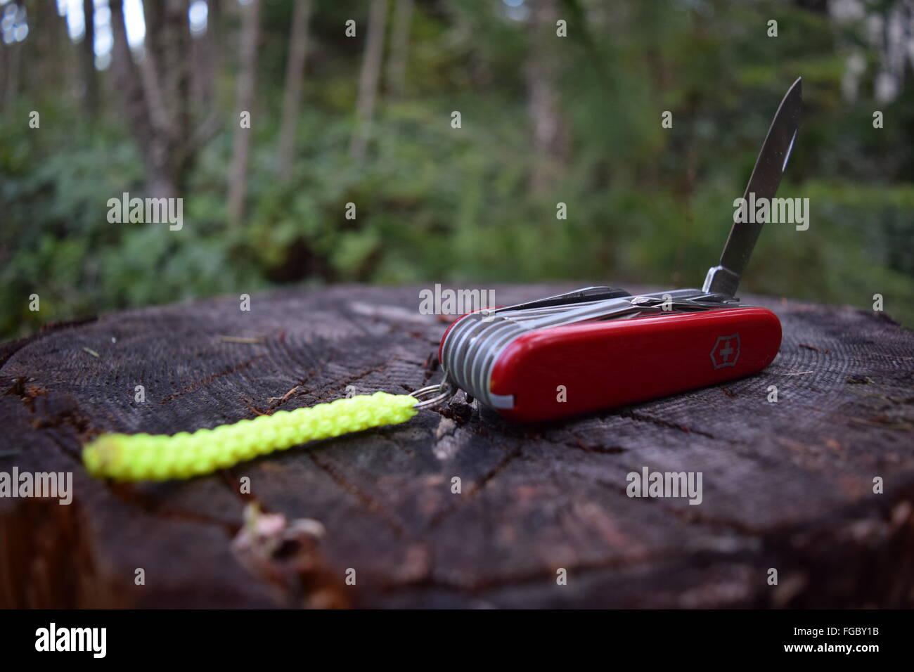 Swiss Army Knife on tree stump - Stock Image