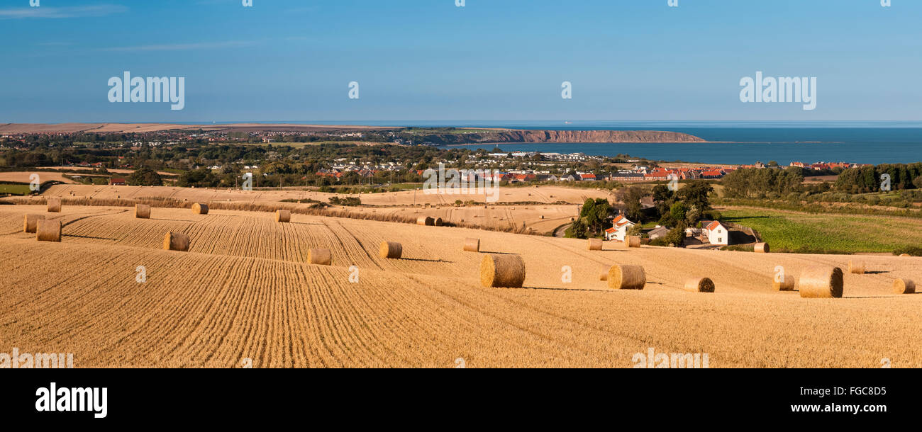 A view of harvested fields with rolls of bound straw looking back towards the coast and Filey Brigg. Filey, North - Stock Image
