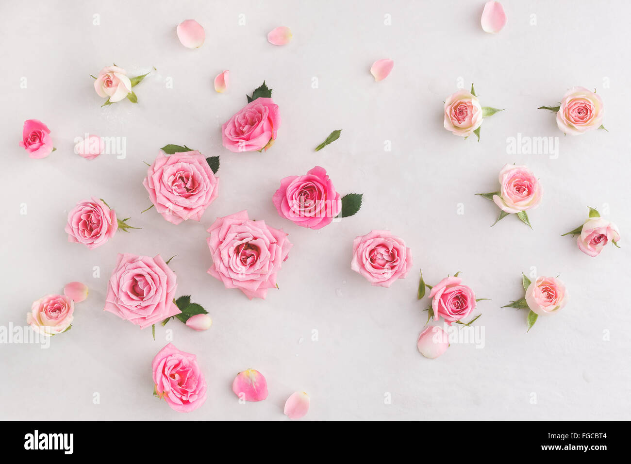Various Soft Roses And Leaves Scattered On A Vintage Background Overhead View