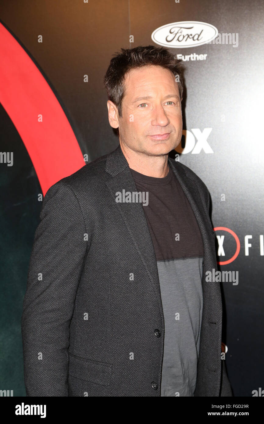 Celebrities attend THE X-FILES Premiere Event at California Science Center.  Featuring: David Duchovny Where: Los - Stock Image