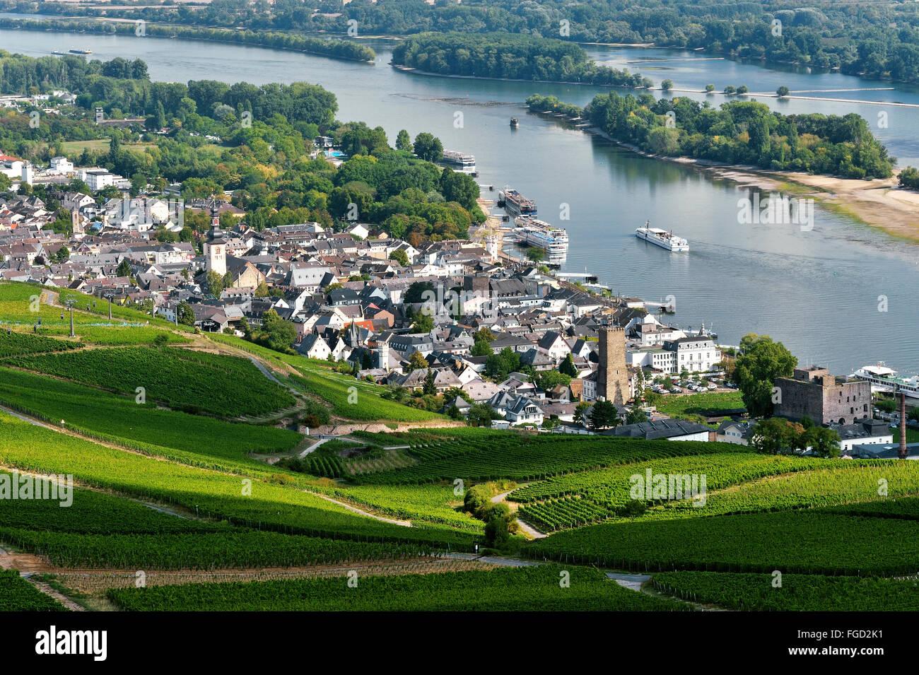 Rüdesheim am Rhein and vineyards, Upper Middle Rhine Valley, Germany Stock Photo