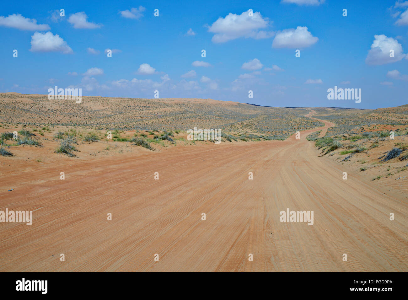 Desert road to Wahiba Sands, one of the most popular tourisit destinations in Oman. - Stock Image