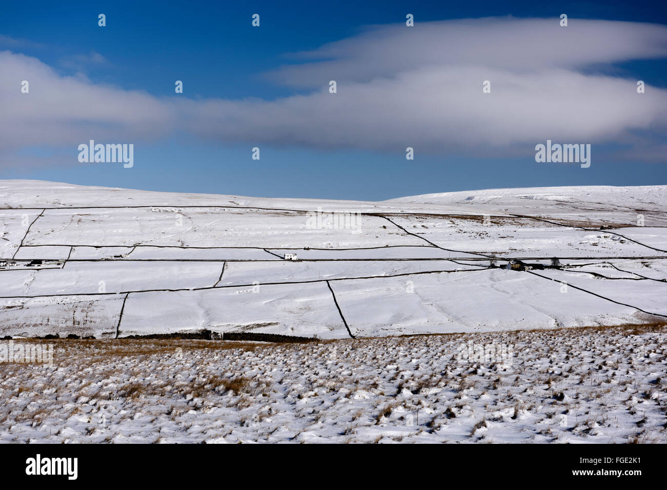 Upper Teesdale in Winter - Stock Image