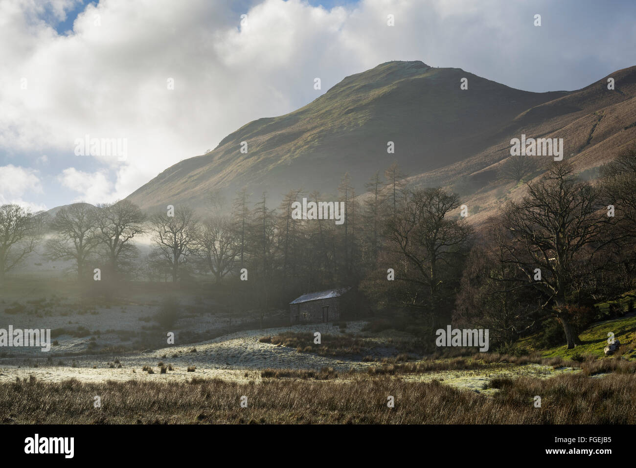 Winter Brandelhow view to Catbells.  Near Derwentwater, the Lake District National Park, England. - Stock Image
