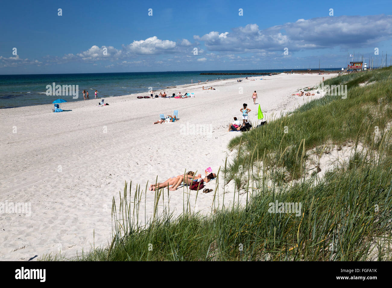 Sandy beach and sand dunes, Skanör Falsterbo, Falsterbo Peninsula, Skåne (Scania), South Sweden, Sweden, Scandinavia, Stock Photo