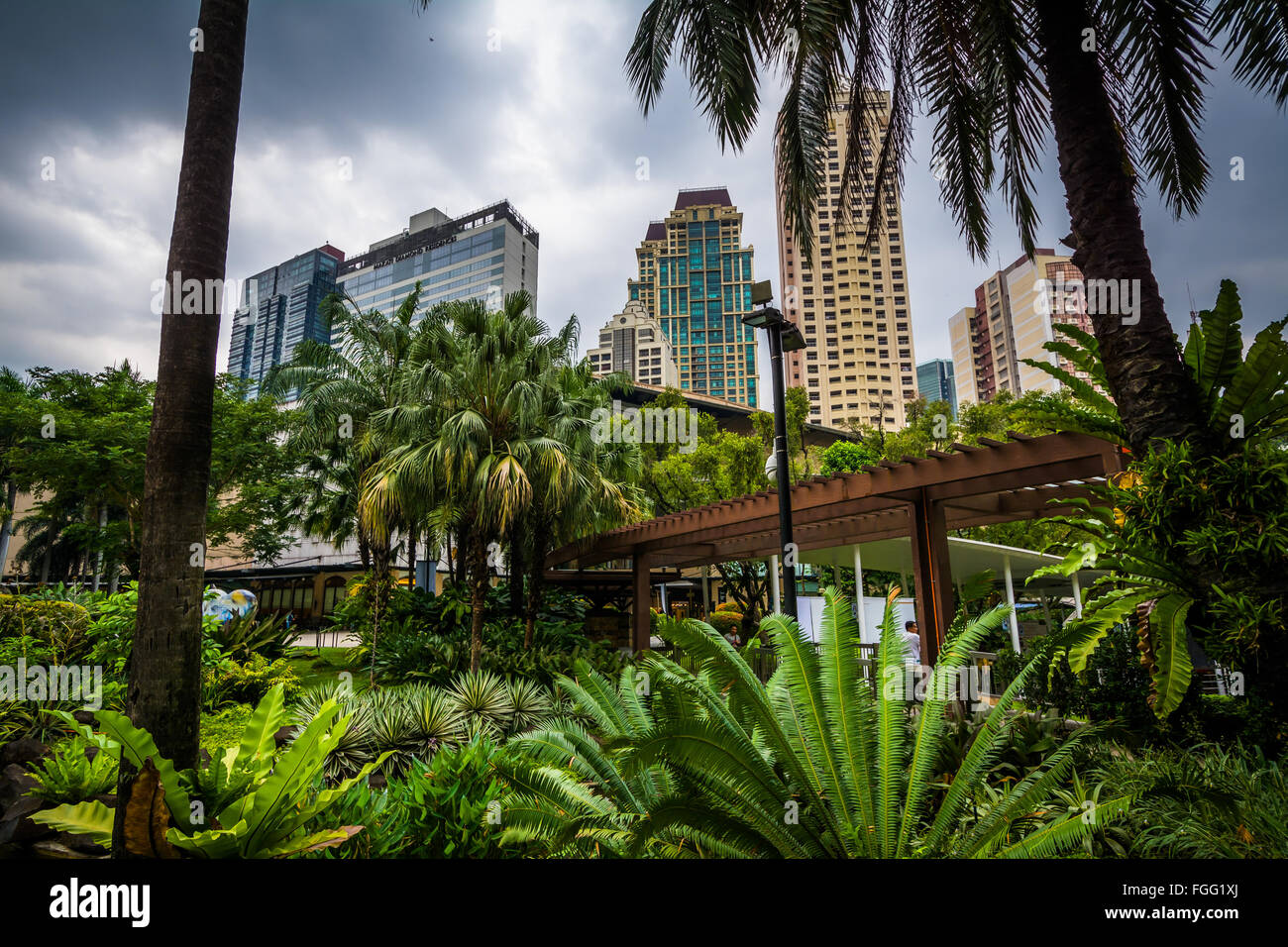 Garden and skyscrapers at Greenbelt Park, in Ayala, Makati, Metro Manila, The Philippines. - Stock Image
