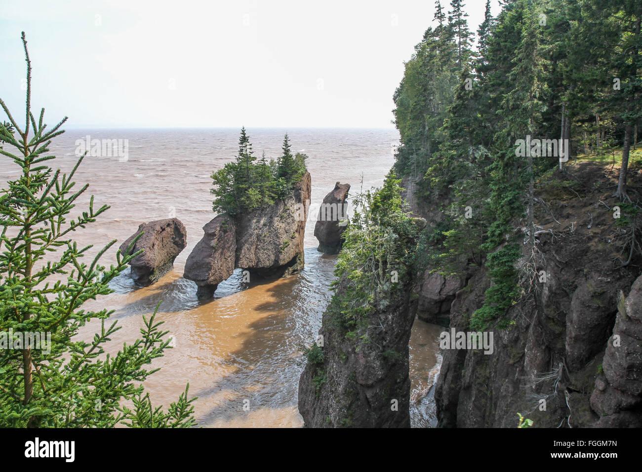 Fundy Flower Pot Rocks Stock Photo: 96253465   Alamy