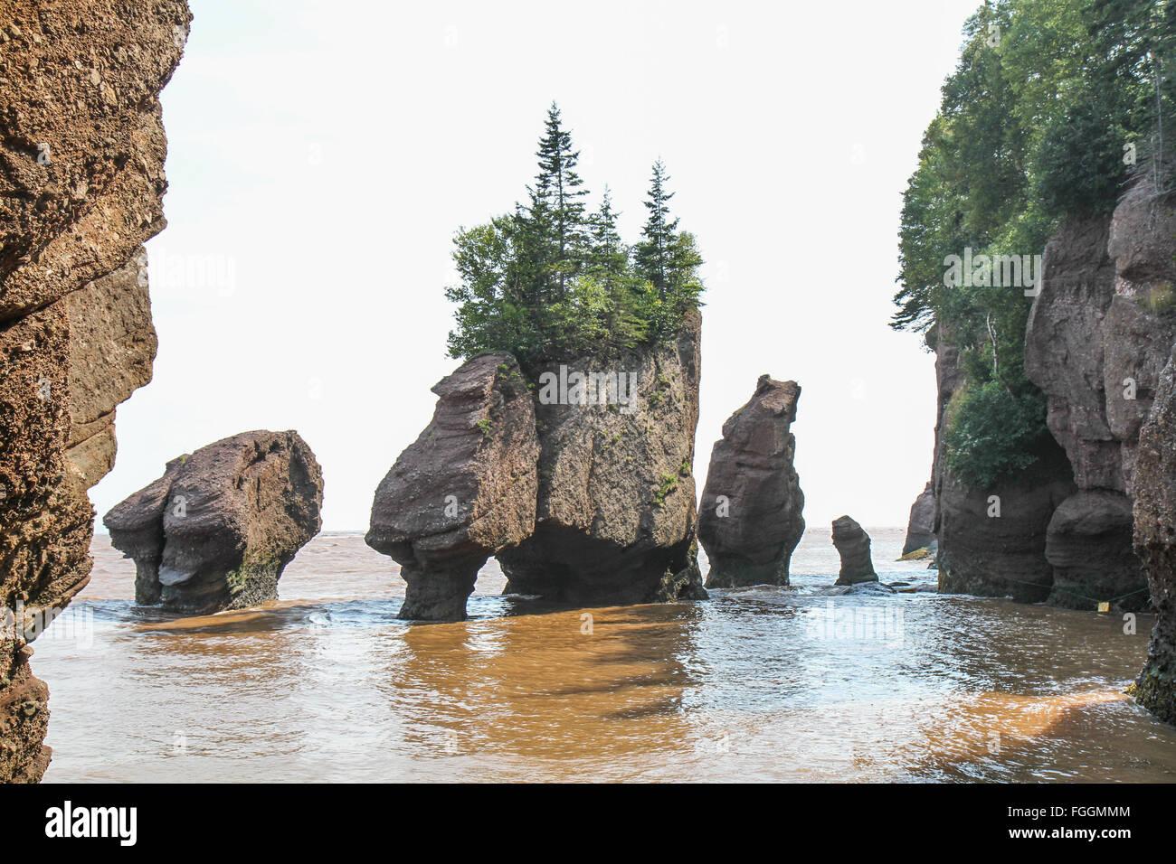 Genial Fundy Flower Pot Rocks Stock Photo: 96253828   Alamy