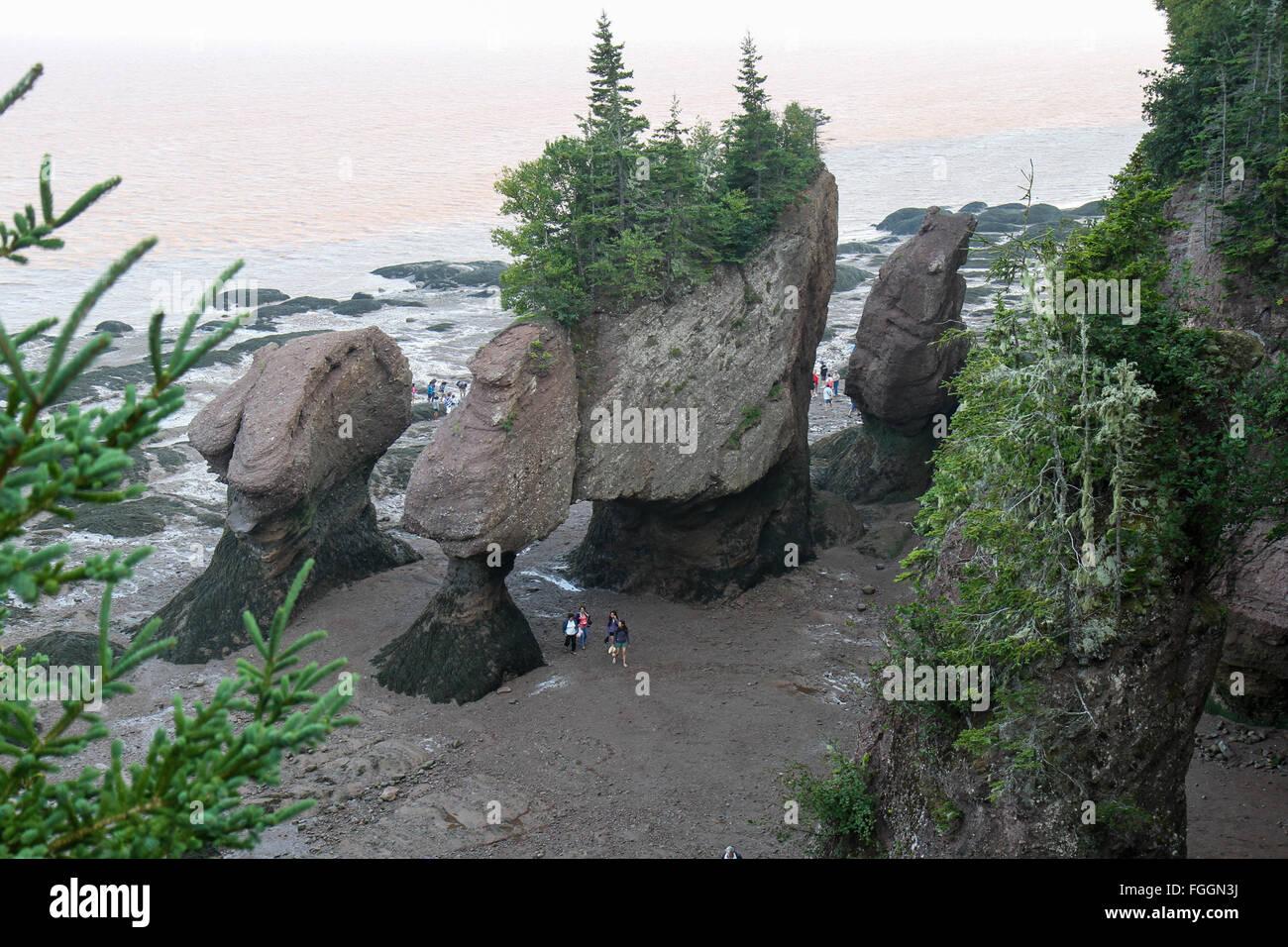 Flower Pot Rocks Stock Photo: 96254134   Alamy