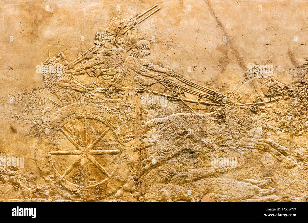 King Ashurbanipal in chariot, Lion hunt reliefs c.645-635 BC from palace in Ninevah, Assyrian Gallery, British Museum, - Stock Image