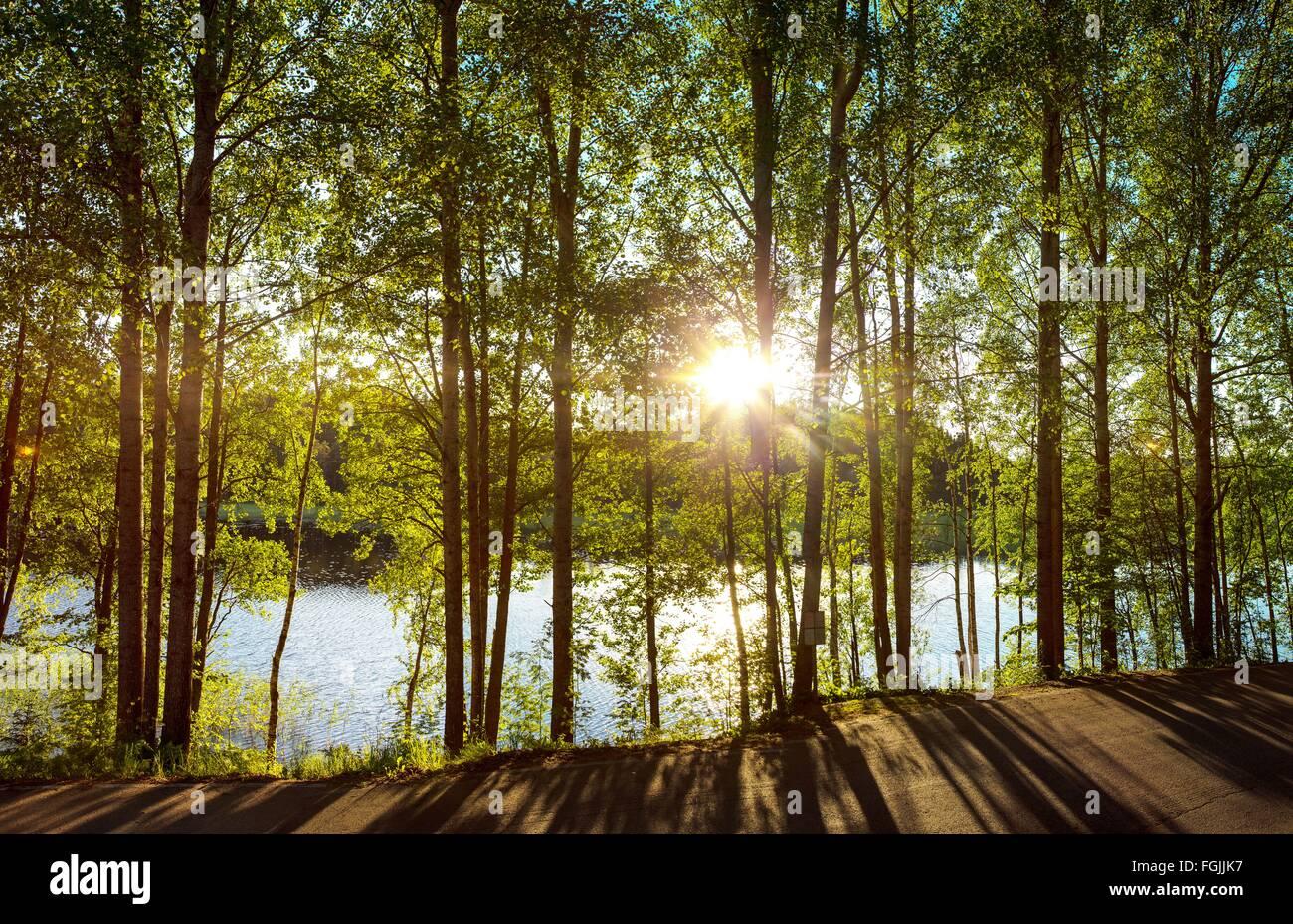 järvi; luonto; maaseutu; kesä; vesistö - Stock Image