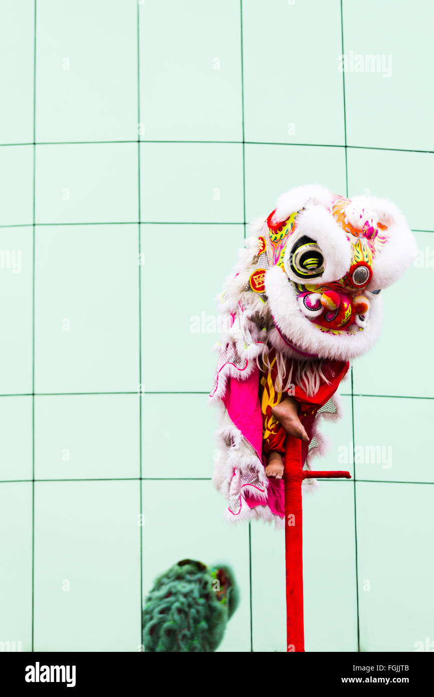 Chinese new year Phnom Penh Dragon dancers perform in the streets Stock Photo
