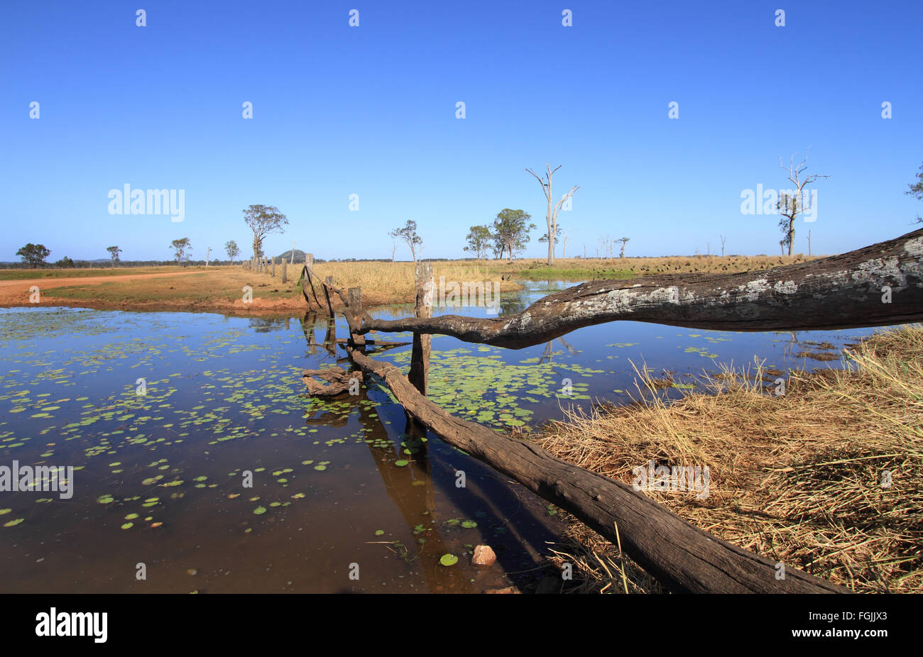 Outback Australian billabong water hole with blue sky and red earth. - Stock Image
