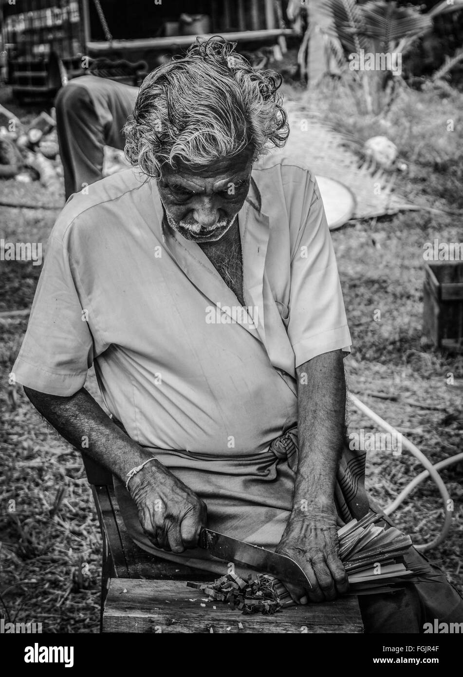 The Grandpa - Stock Image