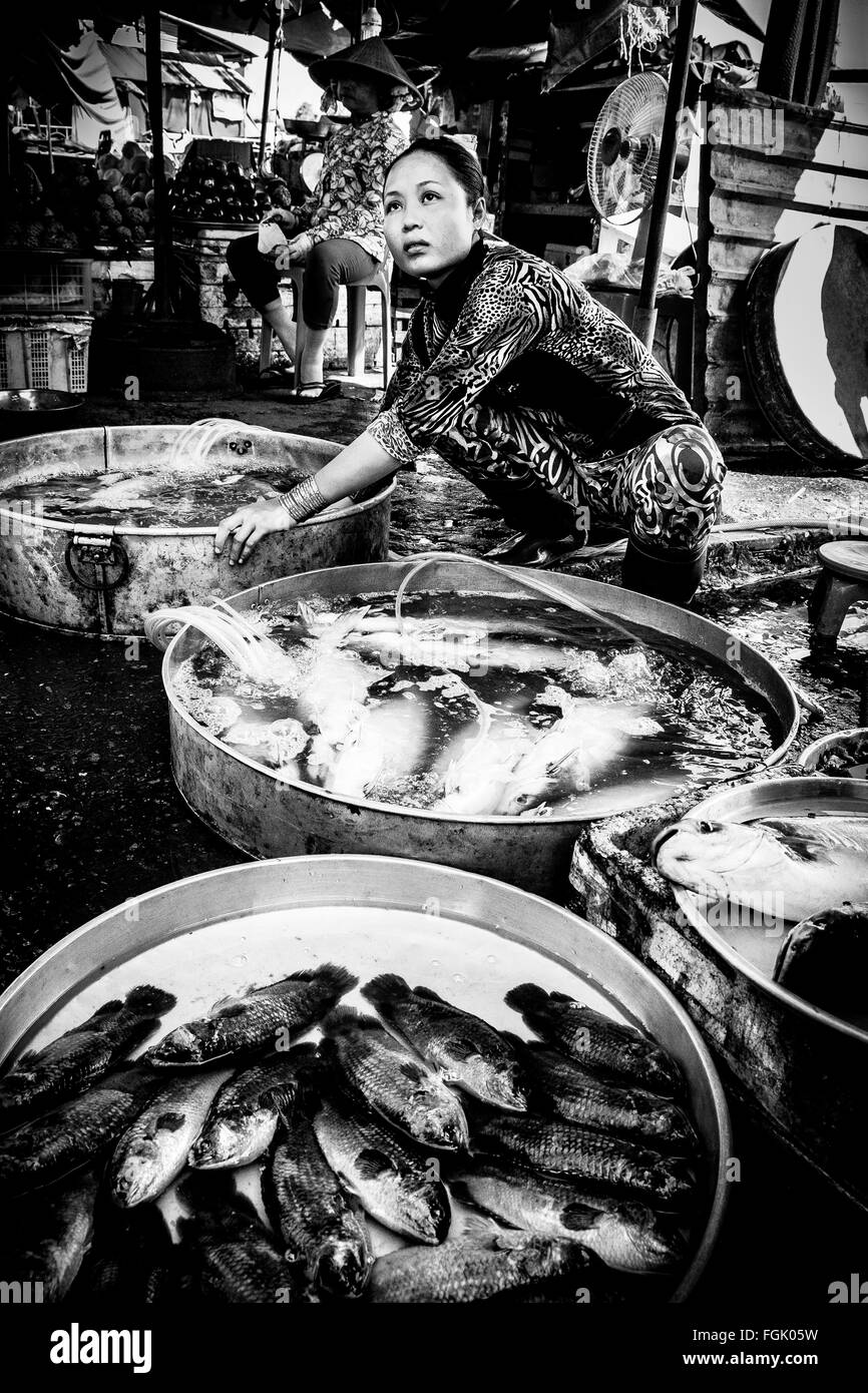 A woman sells fresh fish in the land market at Cai Be town in the Mekong Delta, Southern Vietnam. - Stock Image