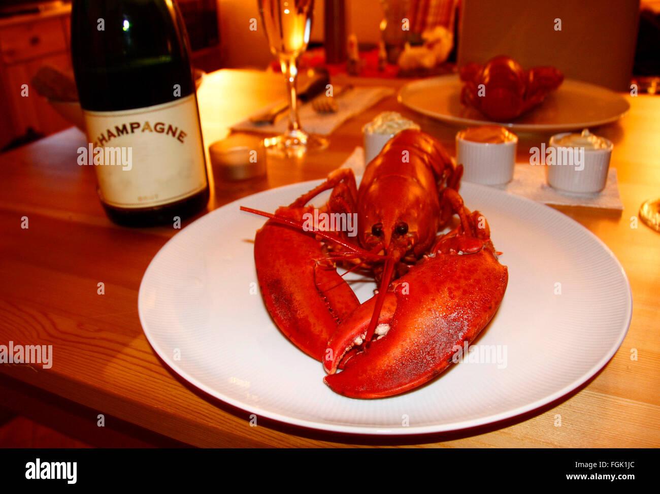 Champagner, Hummer. - Stock Image