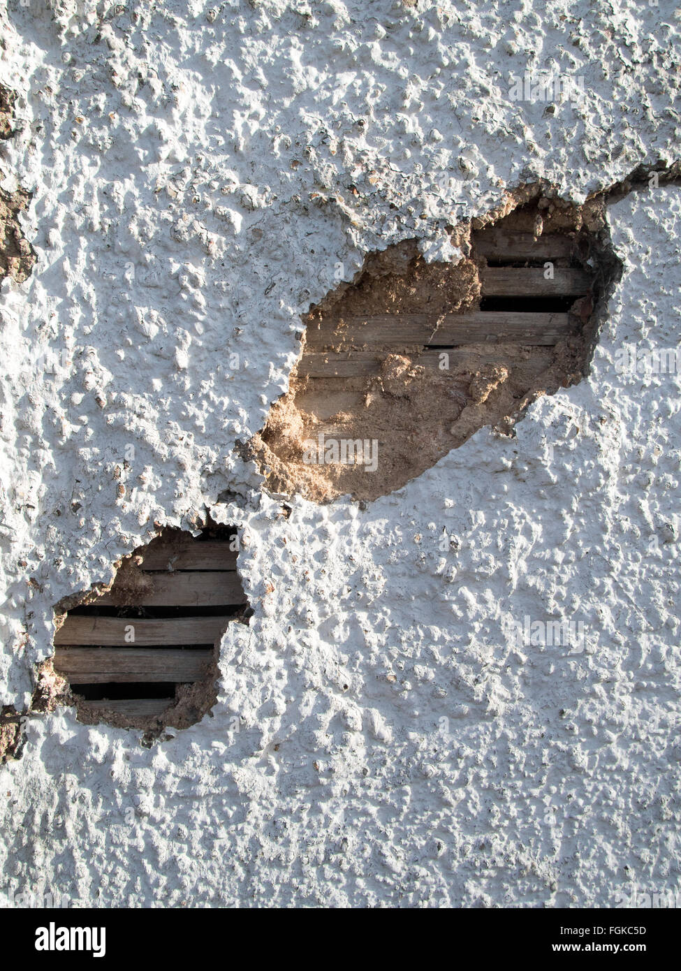 Wattle and daub - a damaged wall on a medieval building in Suffolk, England. - Stock Image