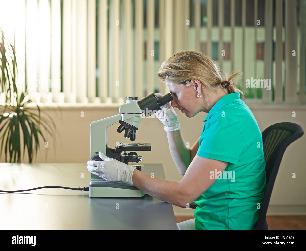 Nurse, doctor looking through microscope, Austria - Stock Image