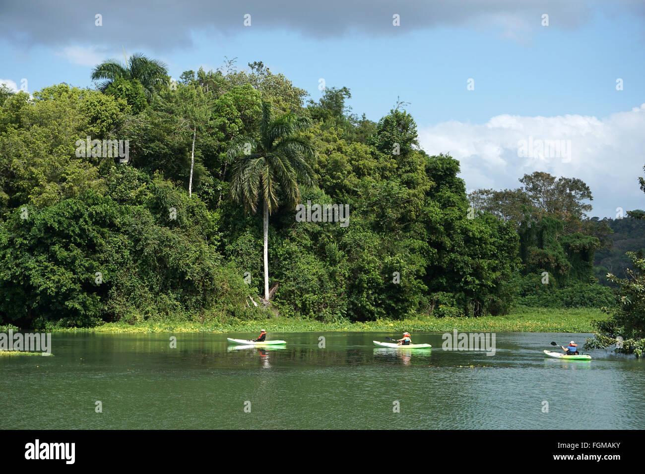 Canoeing at Chagres river Soberania National Parc Panama - Stock Image