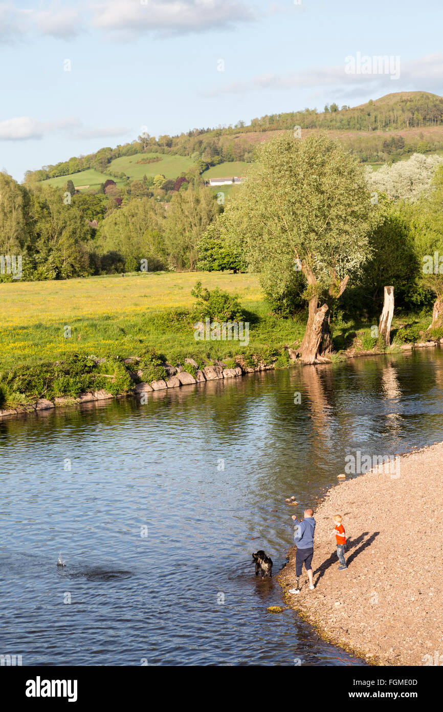 Man and boy with dog skipping stones over the River Usk at Abergavenny, Wales, UK - Stock Image