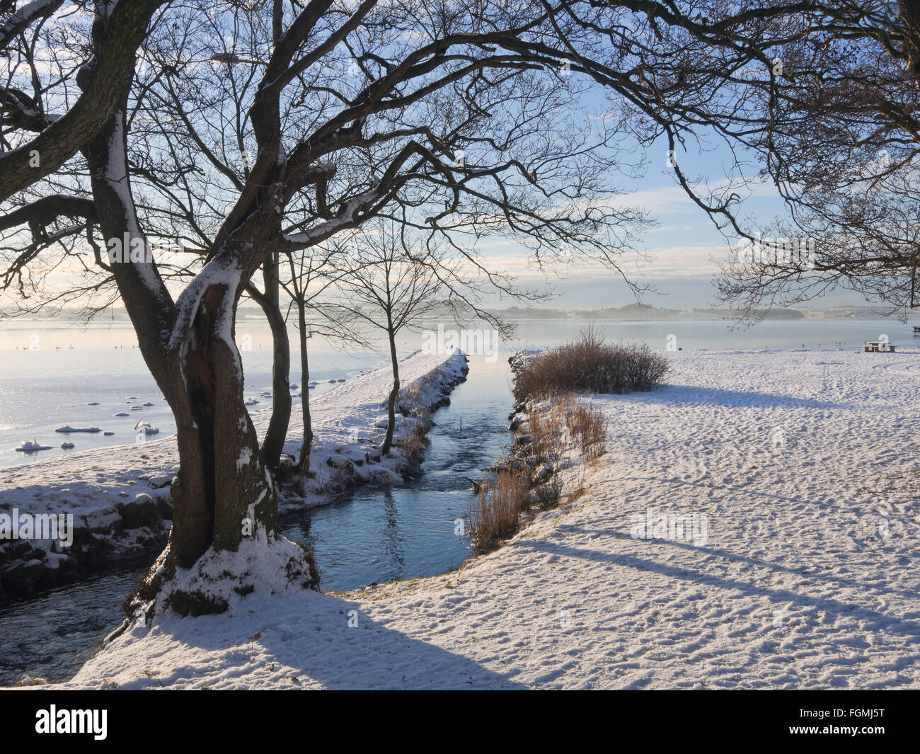 Idyllic sunny winter day on the shore of Hafrsfjord in Stavanger Norway, ice and snow  cover , calm blue white landscape - Stock Image