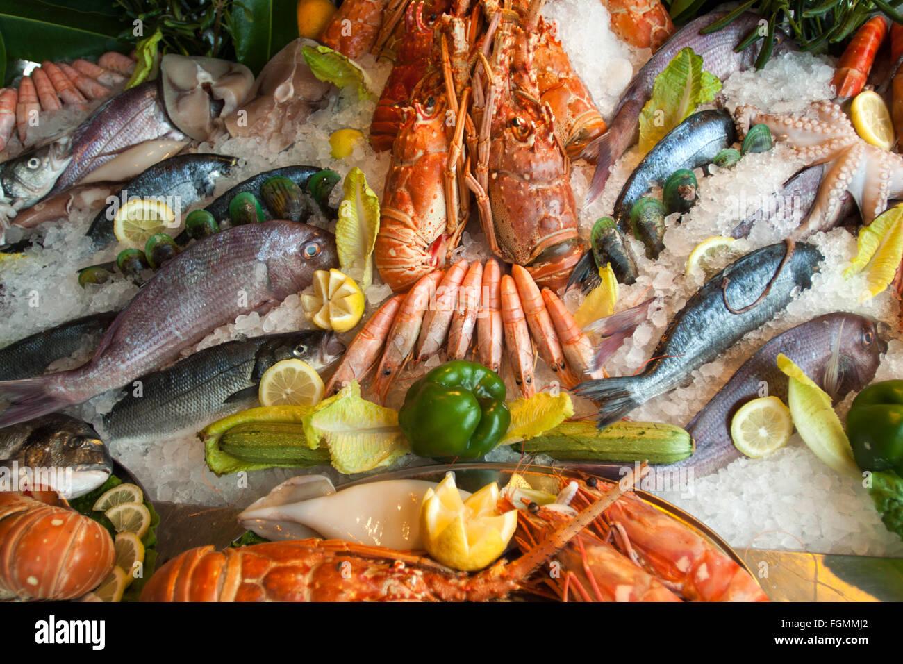 Griechenland, Kreta, Rethymnon, die Restaurants und Tavernen am venezianischen Hafen bieten Fisch und Meeresfrüchte - Stock Image