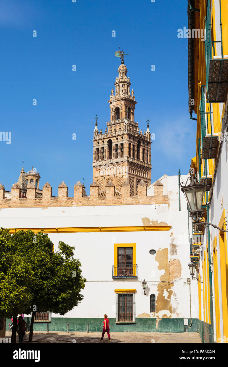 Seville, Seville Province, Andalusia, southern Spain.  Giralda tower seen from Patio de Banderas. - Stock Image