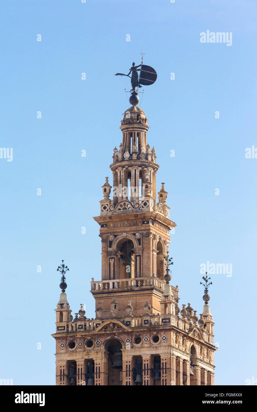 Seville, Seville Province, Andalusia, southern Spain.  The Giralda tower seen from Plaza San Francisco. - Stock Image