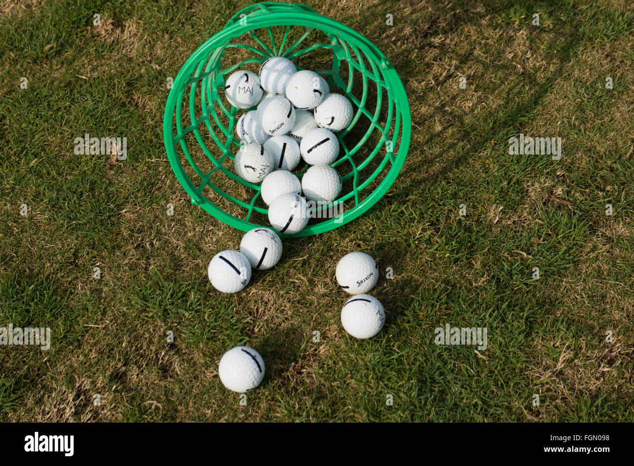 Balls tumbled from basket on driving range of golf club.Stock Photo