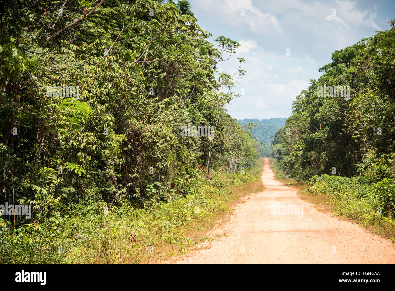 Rough Road through the Jungle, Guyana - Stock Image