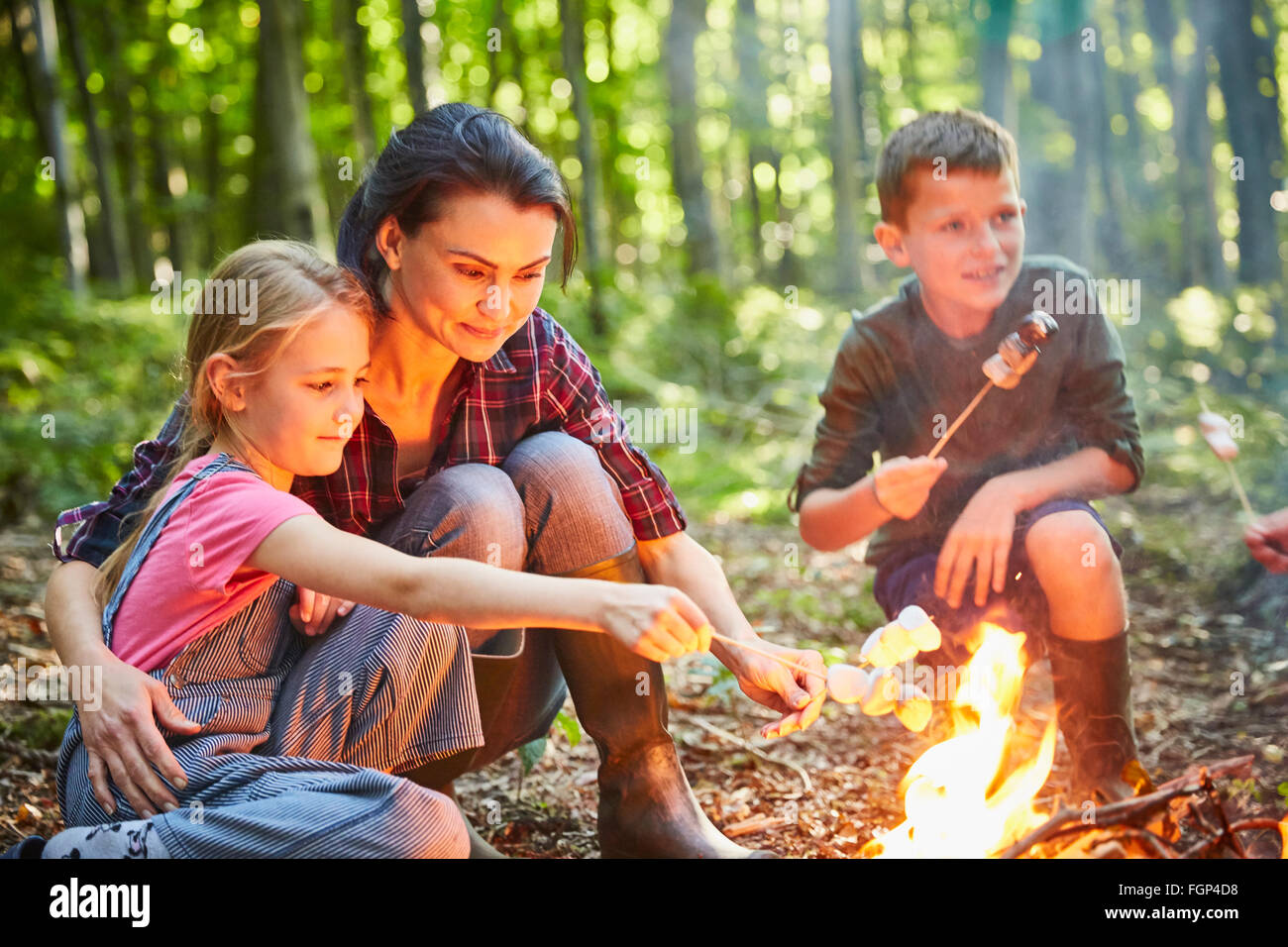 Family roasting marshmallows at campfire in forest - Stock Image