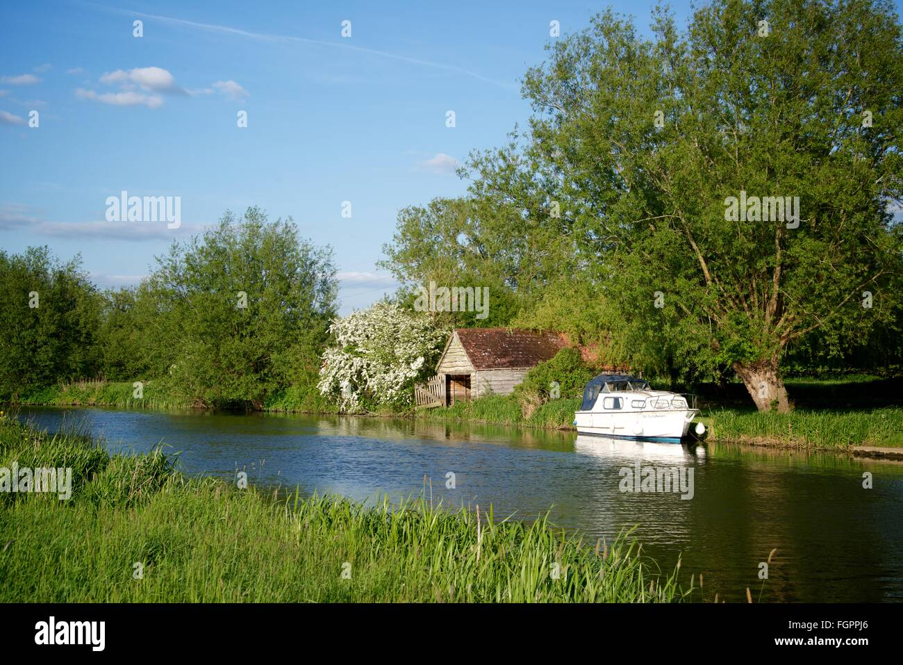 Cycling along the river Thames near Appleton in Oxfordshire, England - Stock Image