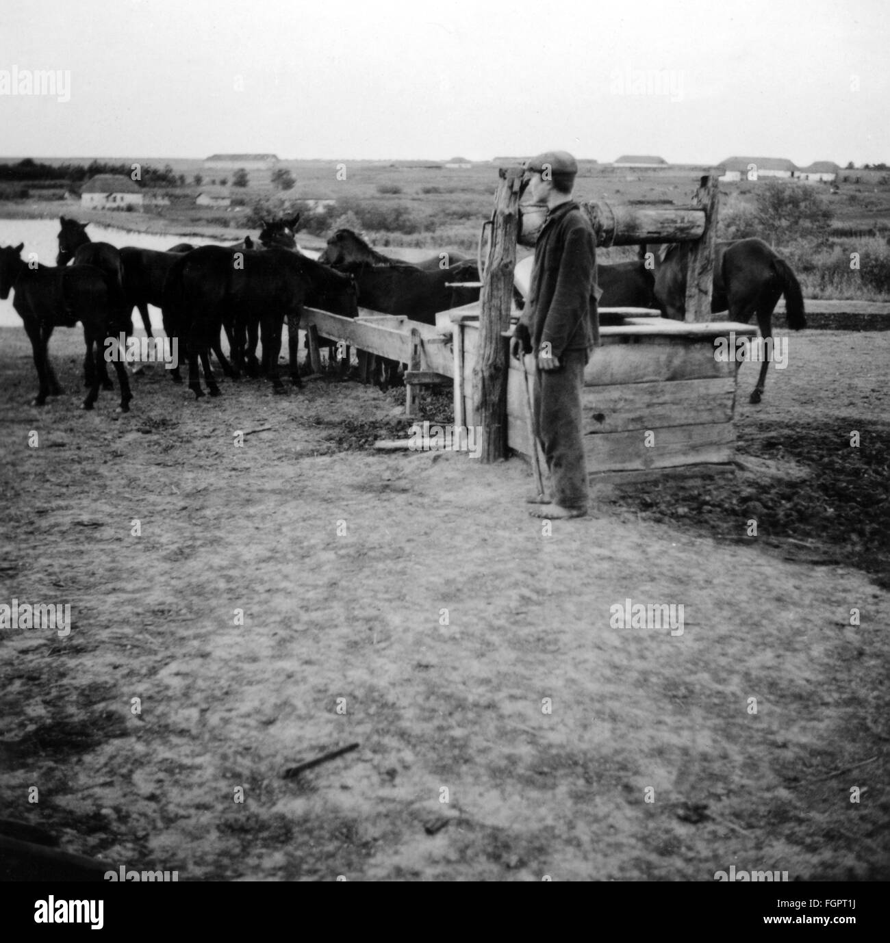 events, Second World War / WWII, Soviet Union, civilian population, Ukrainian peasant with horses, photo taken by - Stock Image