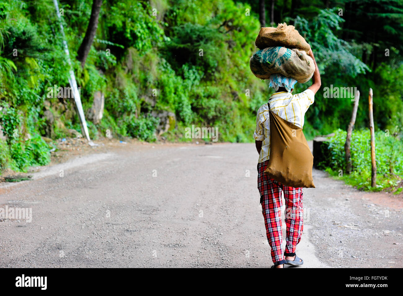 An Indian man walking away, climbing in a forest road, carrying heavy sacks on his head - Stock Image
