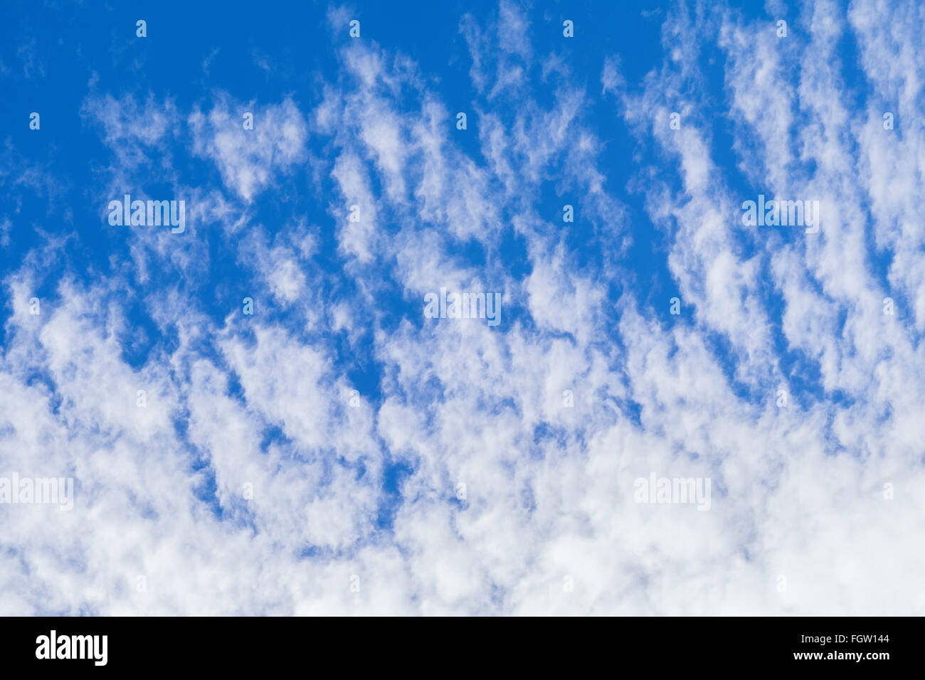 Altocumulus clouds against a blue sky in late winter on a warm day. - Stock Image