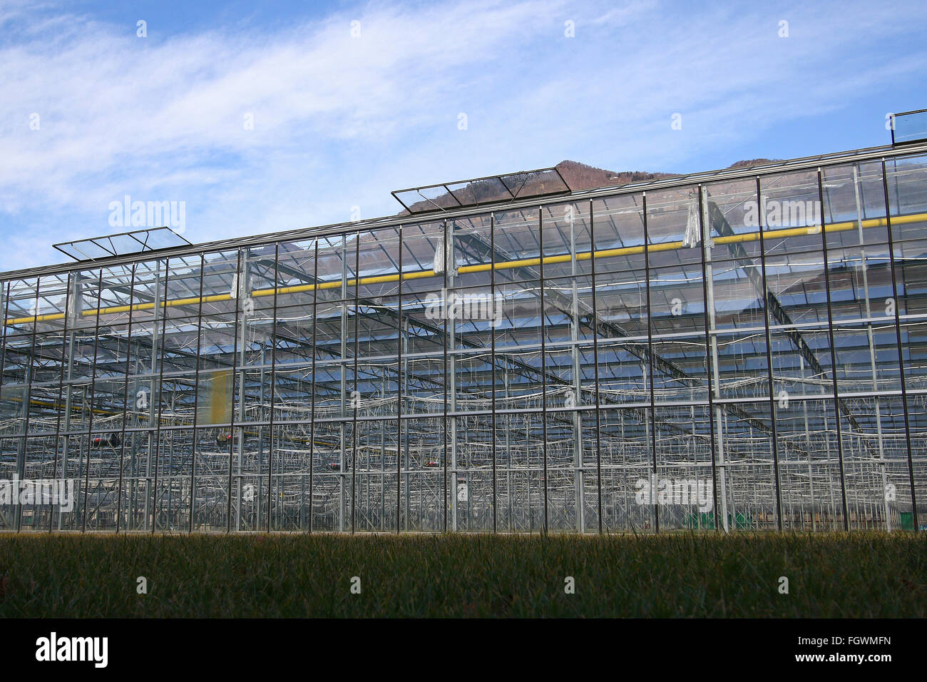 Modern greenhouse with temperature control,irrigation and solar panel operated lighting and windows - Stock Image