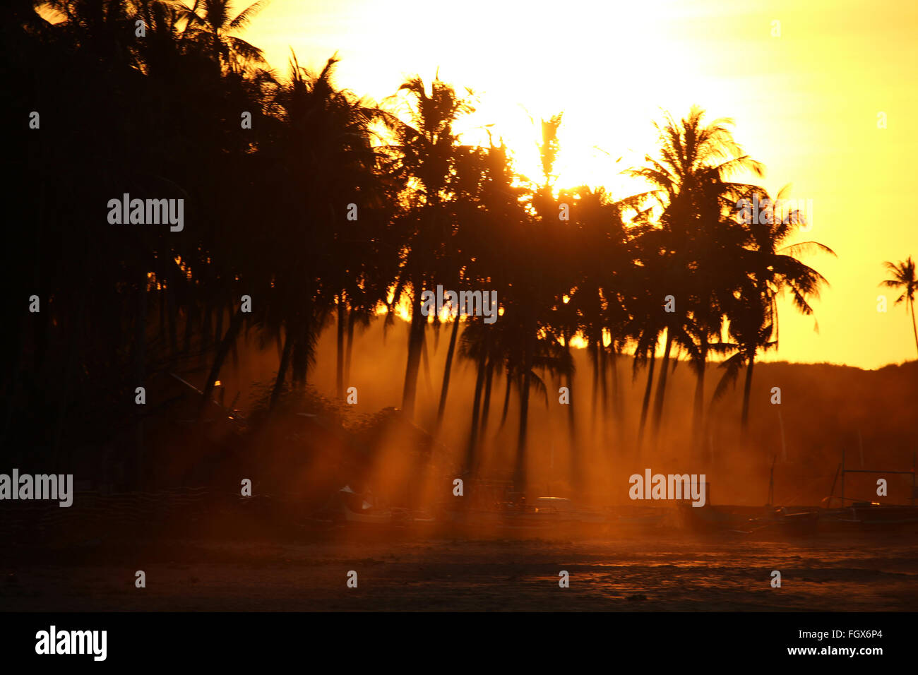 Mystical orange sunset with palms in the back light at Nacpan beach - Stock Image