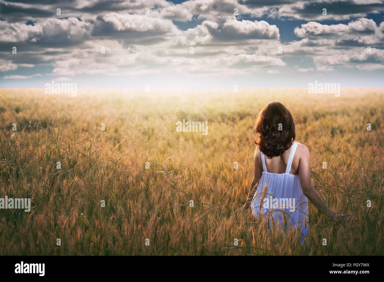 Woman staring at a dramatic sky in a golden field . Sunset light - Stock Image