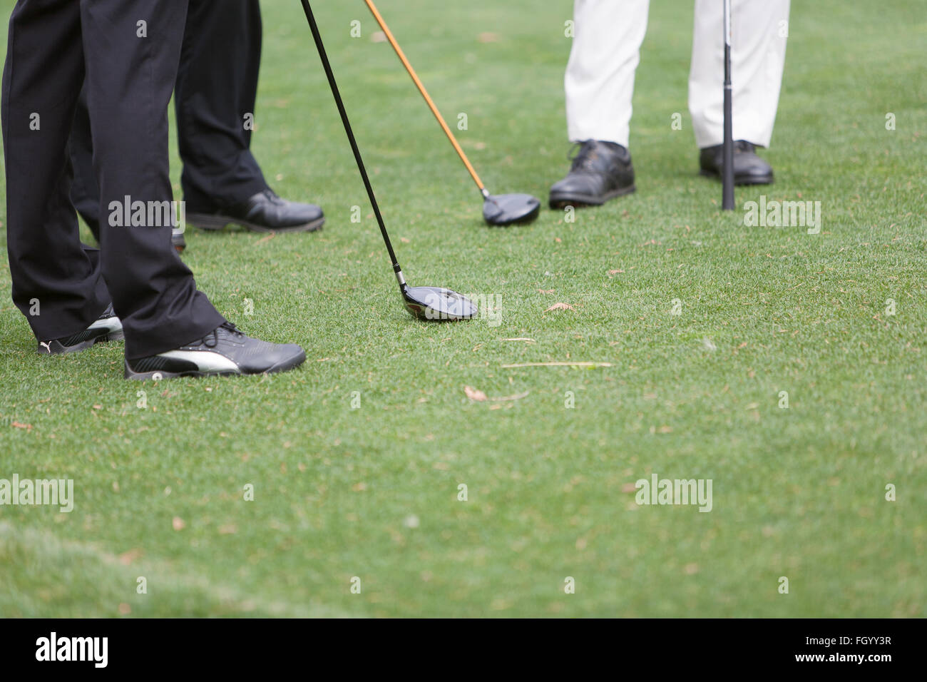 Men standing on a golf green - Stock Image