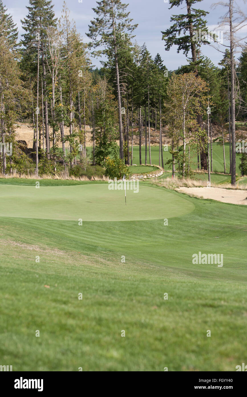A gold course in British Columbia - Stock Image