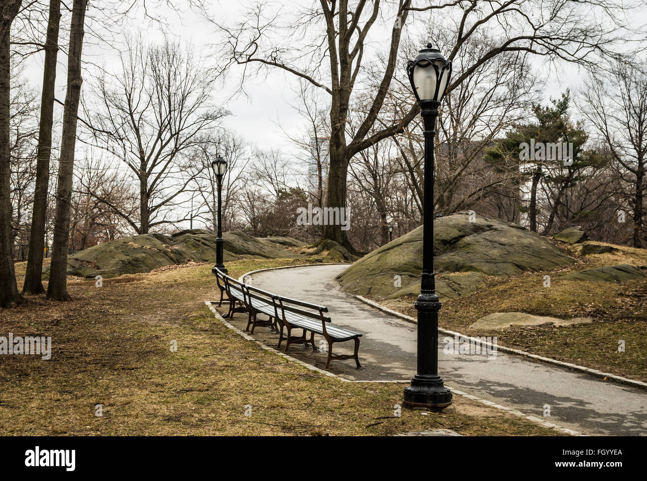 Winding footpath in Central Park, New York, with trees, lamp posts, and benches in Winter. - Stock Image