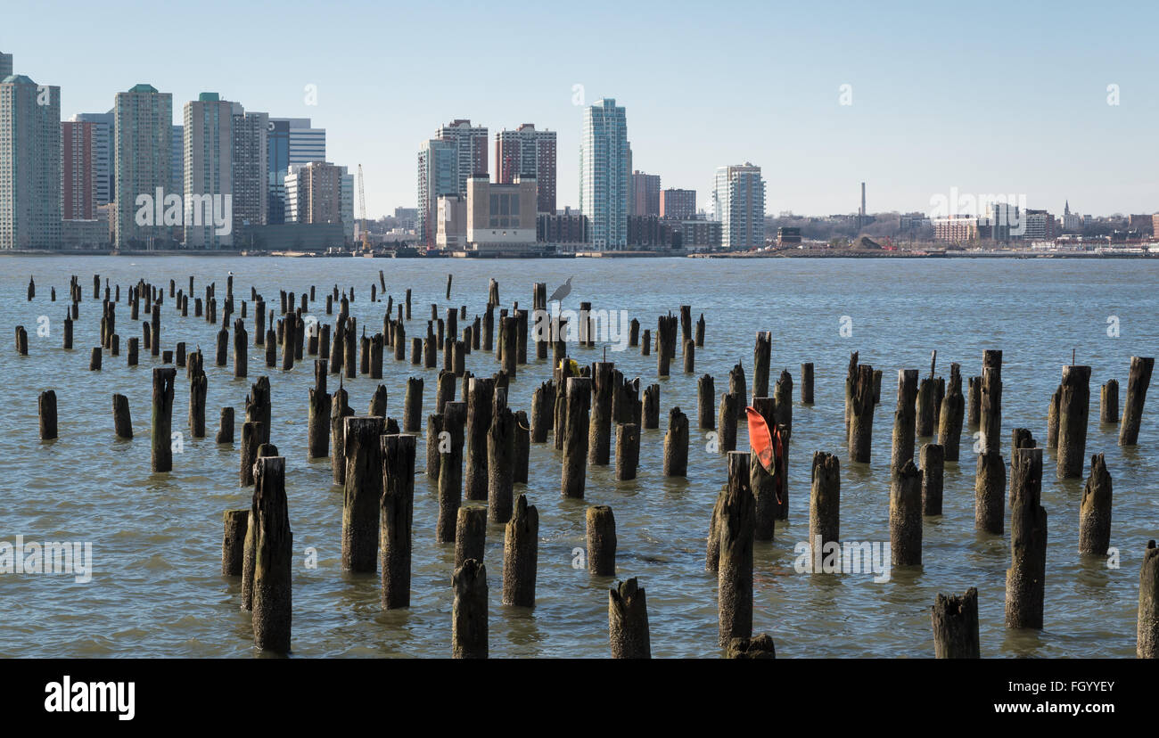 View towards Jersey City (Newport/ Hoboken) skyline with wooden pile field in foreground. - Stock Image