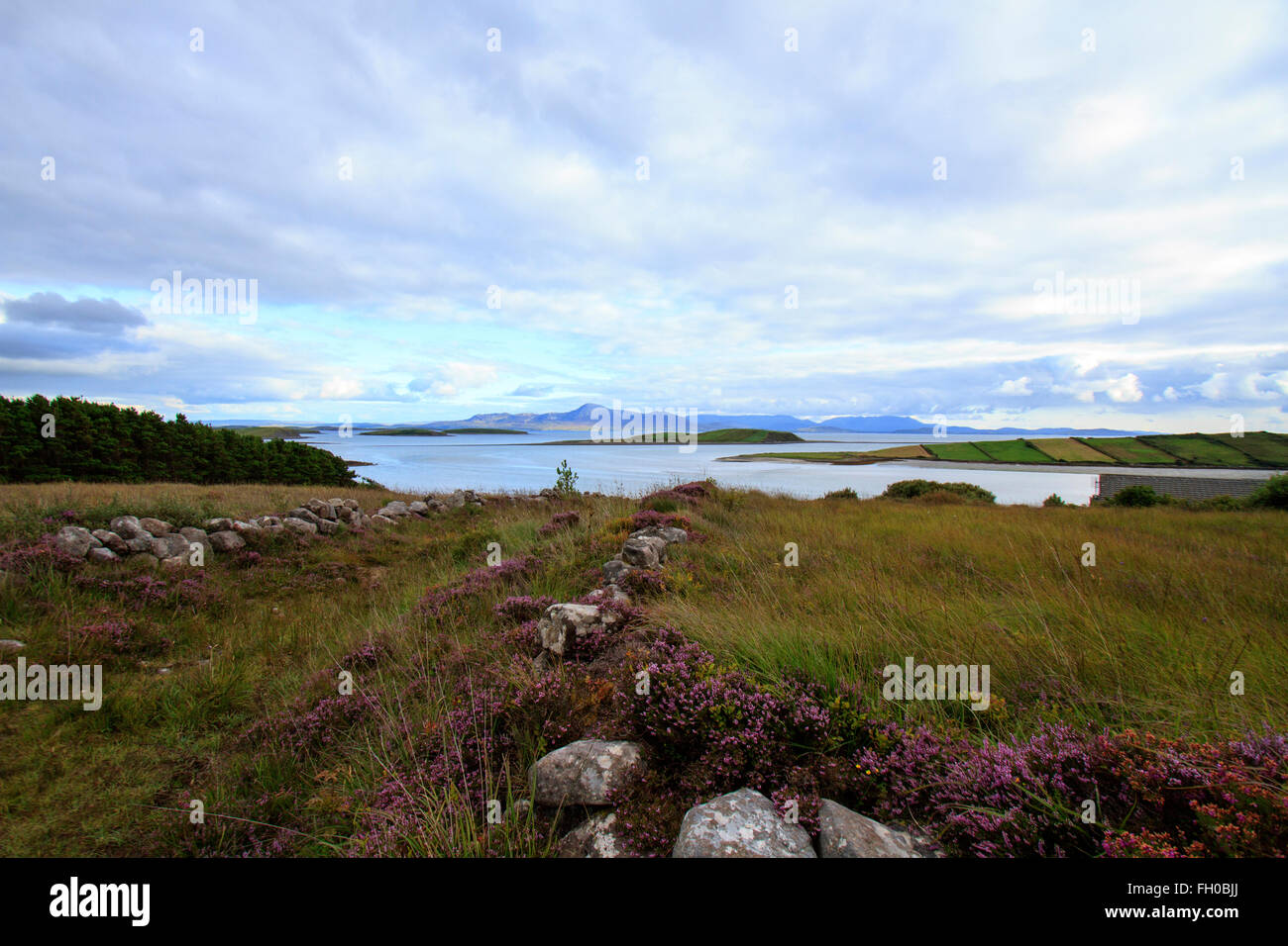 A field in which there is a heather covered stone wall in the foreground leading down to the sea and mountains - Stock Image