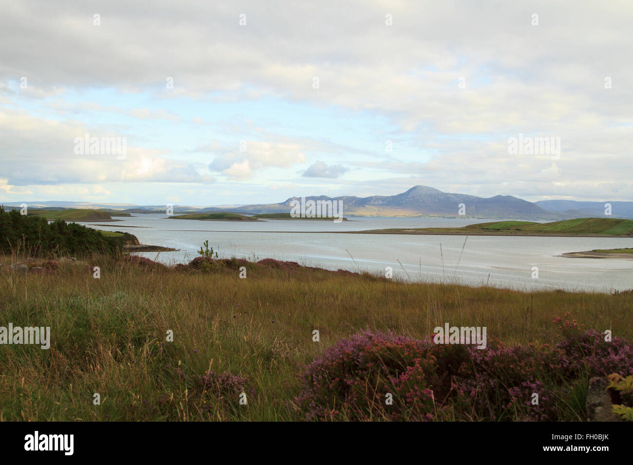 Achill - Heather, Sea and mountains - Stock Image