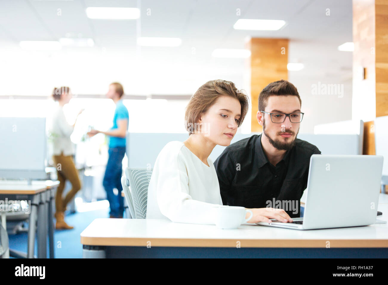 Serious focused young man and woman sitting and working with laptop together in office - Stock Image