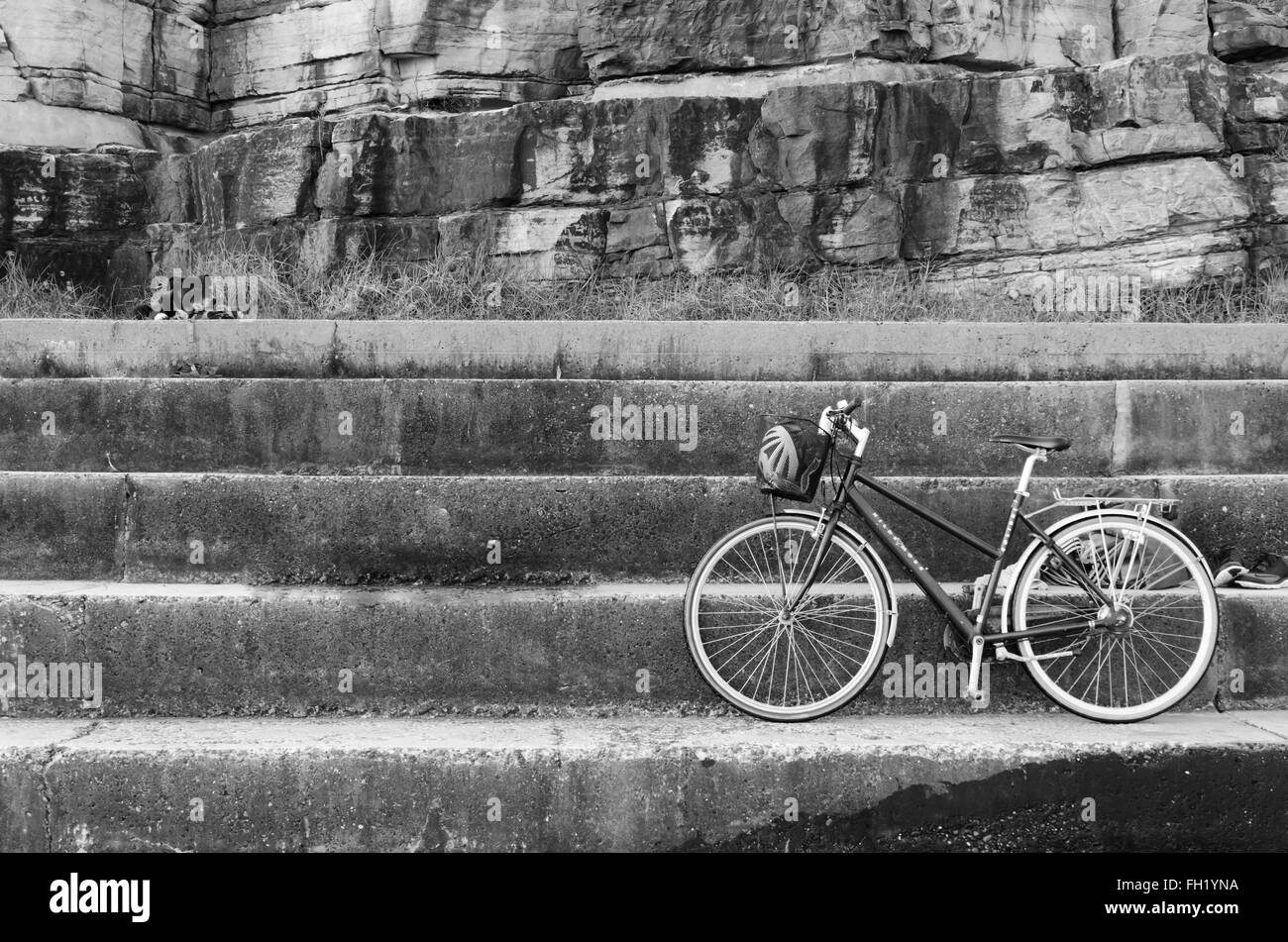 A bicycle parked and a dog tied up waiting for its owner to return. - Stock Image