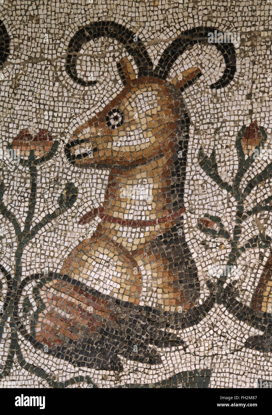 Roman mosaic of a Phoenix. Ibex head. Detail. From Daphne, a suburb of Antioch on the Orontes (now Antkaya). 6th - Stock Image