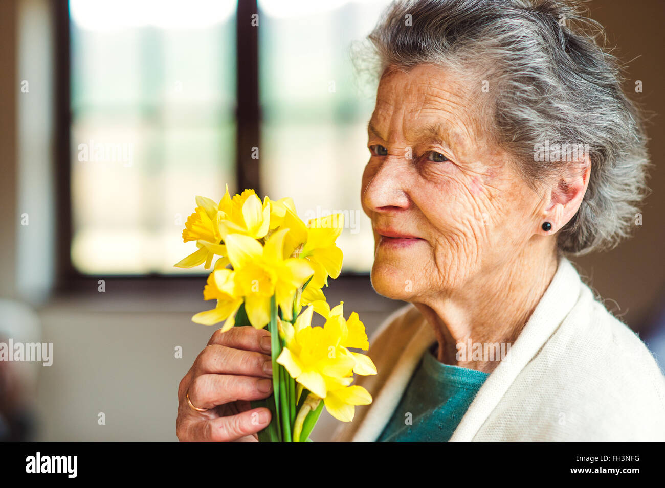 Senior woman by the window holding bouquet of daffodils - Stock Image
