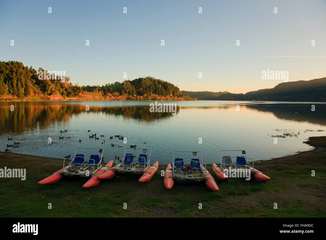 Furnas lake at sunset. Sao Miguel island, Azores islands, Portugal. - Stock Image