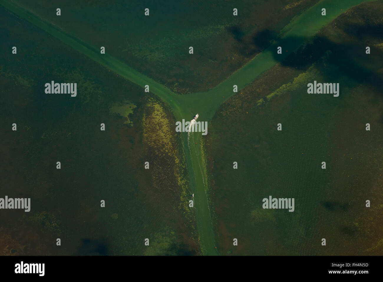 Aerial view, fairway branch Schaprode Hiddensee by ferry, Hiddensee, Baltic Sea island, Mecklenburg-Vorpommern, - Stock Image